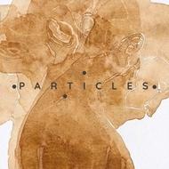 Logo van Particles